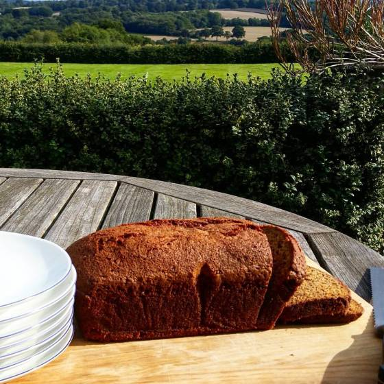 Banana Bread in fields